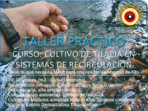 Cursos acuicultura for Estanques de geomembrana para tilapia