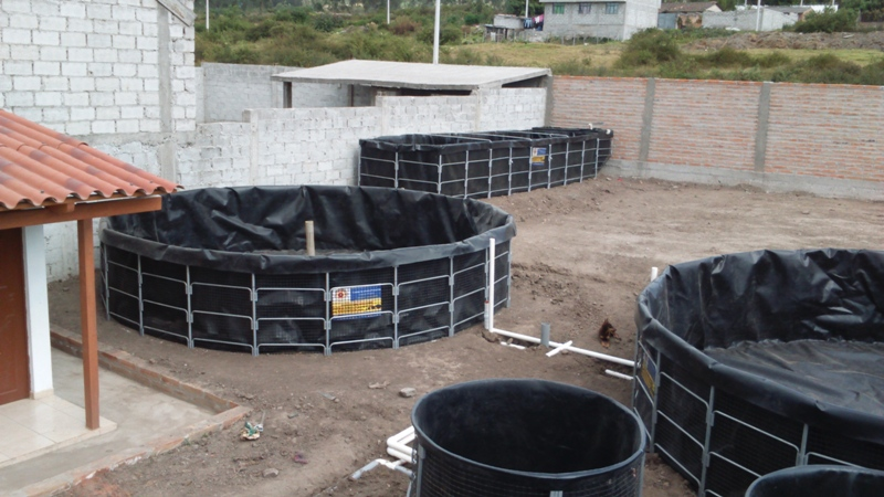 M dulo de piscicultura controlada instalado en ibarra for Estanques de geomembrana para tilapia