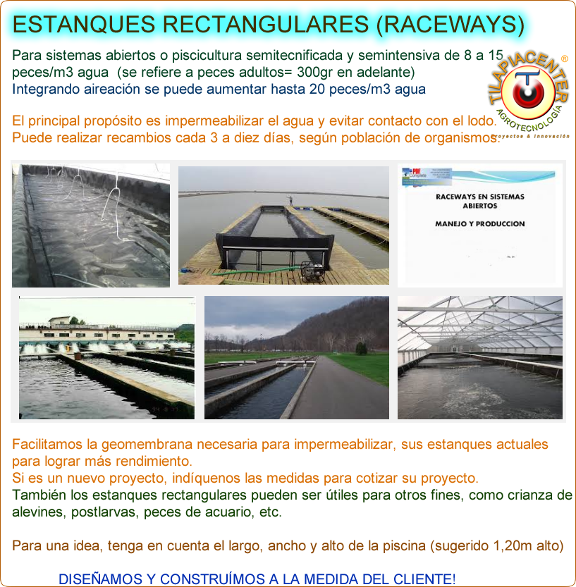 Geotanques circulares y raceways para piscicultura en for Tanques para peces geomembrana