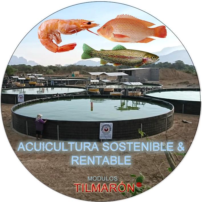 Acuicultura sostenible y rentable Módulos Tilmaron