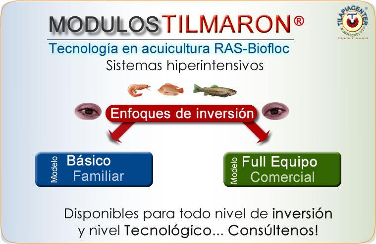 Costo de tanques geomembrana cultivo de camarón y tilapia