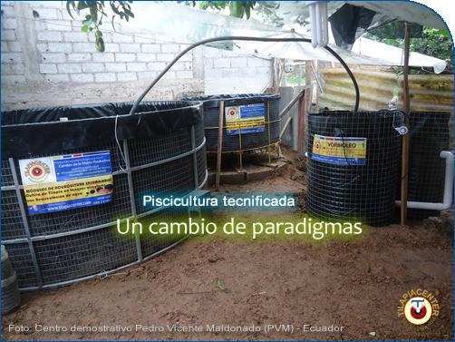 Cambio de paradigmas, en acuicultura controlada Tilapiacenter